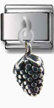 Grape Vine Silver Charm