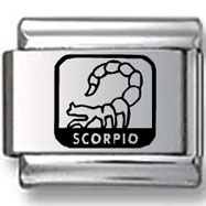 Scorpio the Scorpion Black Laser Charm