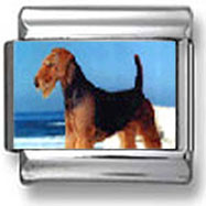 Airedale Terrier Photo Charm
