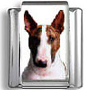 Bull Terrier Dog Photo Charm