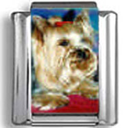 Yorkshire Terrier Dog Photo Charm