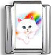White Cat With Rainbow Photo Italian Charm