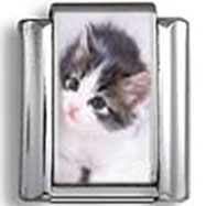 Gray and White Kitten Looking Up Photo Charm