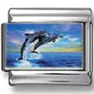 Two diving dolphins photo charm
