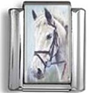 White Horse Head Photo Charm