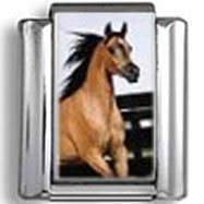 Jumping Horse Photo Charm