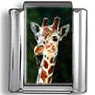 Giraffe photo charm