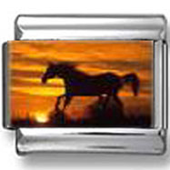 Galloping Horse photo charm