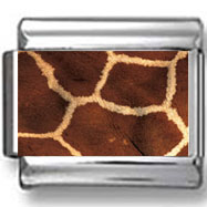 Giraffe Print Photo Charm