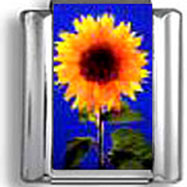 Sunflower Italian Charm