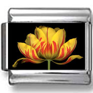Red and Yellow Flower Photo Charm
