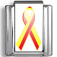 Red and Yellow Hepatitis C Awareness Ribbon Photo Charm