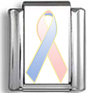 Pink and Blue Awareness Ribbon Photo Charm