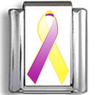 Yellow and Purple Awareness  Ribbon Photo Charm